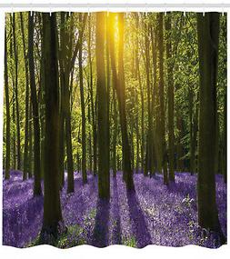 Carpet of Bluebells Deep in Forest Floor Oxfordshire Image S