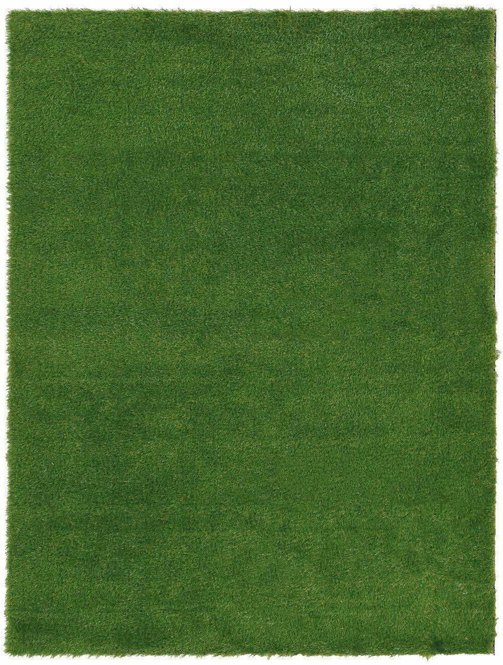 Koeckritz Rugs Fake Lawn Artificial Grass Tough Turf w/Drain
